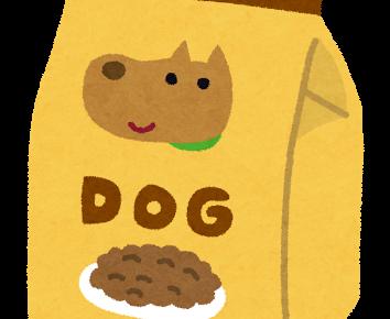 高齢犬にはどんな食事を与えればいいの?