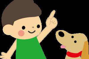 愛犬が噛むのは貴方の問題です!愛犬をしかる前に読んでください