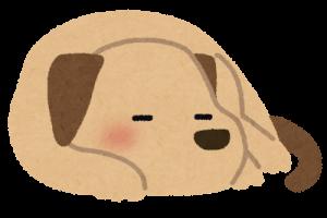 豆知識!漢字の「仔犬」と「子犬の表記に違いはあるの?教えて!