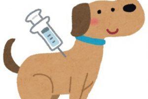 ワクチン接種の日に注意する3つのこと
