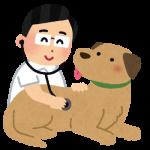 犬の混合ワクチンで防げる病気って?