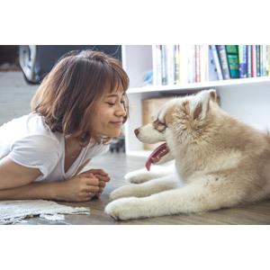 信頼関係の構築の第一歩「おすわり」貴方の愛犬はできますか?