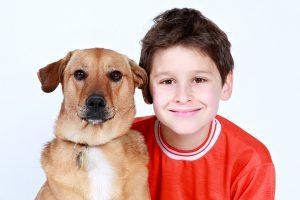 犬の人見知りは治るの?早めに取り組みたいしつけのコツ