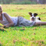 犬とお出かけする注意点を知ってますか?ペット同伴ホテルから山、川、キャンプまでの基本知識