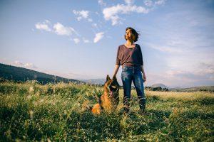 犬の歴史を知ってる?うちの子の先祖はなにをしていたの?