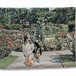 六甲アイランドでおしゃれな犬グッズが買えるお店!「マスト」に注目!