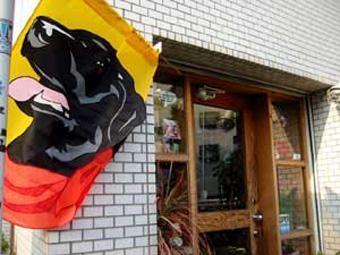 中目黒でおしゃれな犬グッズが買えるお店!「TMARCTUS」を紹介!