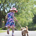 飼い犬の無駄吠えに困っている方必見!吠える犬・子犬のしつけの方法をご紹介!