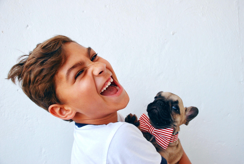 分離不安障害を克服したい!飼い犬のしつけ方を説明します!